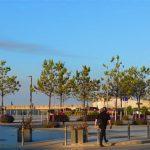 Hafenbereich Greystones